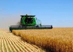 МВФ вимагає від України перевести аграріїв на загальний режим сплати ПДВ