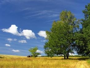 Сьогодні в Україні без опадів, максимальна температура +29