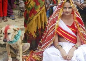 Индийская девушка вышла замуж за собаку
