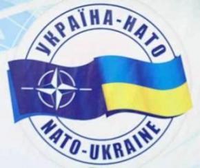 Украина и НАТО планируют принять декларацию об усилении военного сотрудничества