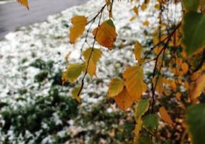 В Украину идут морозы и мокрый снег