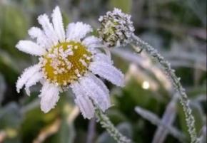 2 жовтня в Україні очікуються перші заморозки