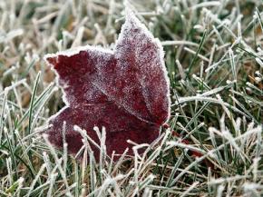 Синоптики рассказали, когда в Украину придут морозы и какую погоду ждать на Новый год
