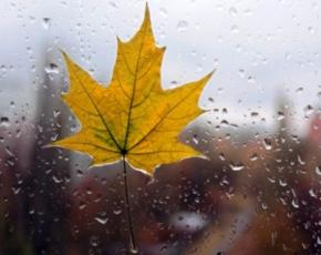 В четверг по всей Украине начнутся дожди