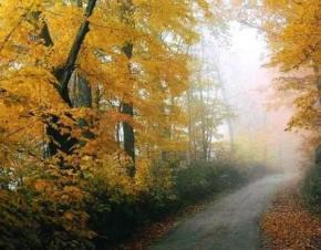 На вихідні в Україні хмарно з проясненнями і переважно суха погода
