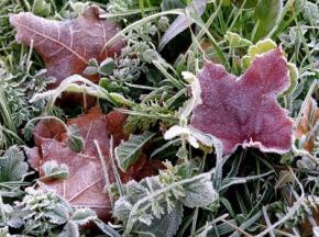 Выходные в Украине будут морозными, температура упадет до -8 °С