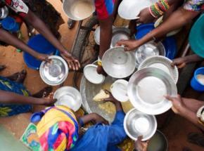 Третина жителів Землі страждає від голоду або неповноцінного харчування