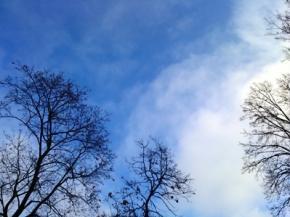 Найближчими днями в Україні збережеться тепла погода