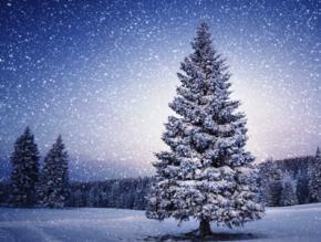 На Новий рік в Україну прийдуть сильні морози