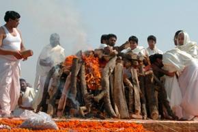 В Индии мужчина
