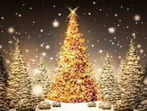 Католики и протестанты сегодня начинают праздновать Рождество