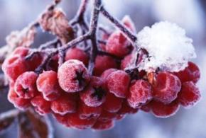 На выходных, 6 и 7 декабря в Украине ожидается облачная погода с прояснениями