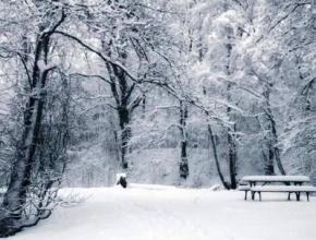 В ближайшие дни в Украину придет существенное похолодание со снегом