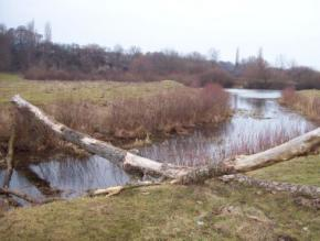 Синоптики прогнозируют месяц без морозов и снега в Украине