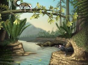 В Китае обнаружены останки древнейшей