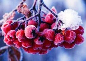 В ближайшие дни в Украине продержится холодная погода