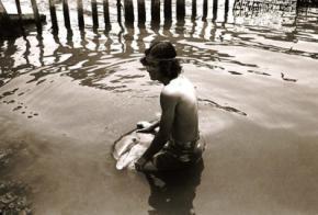Чоловік рік займався сексом з дельфіном, який сам його спокусив