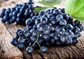 Вживання в їжу темного винограду допомагає боротися із зайвими жировими клітинами