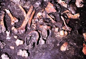 Вчені пояснили зрізання м'яса з кісток трупів стародавніми італійцями