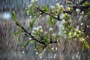 Сегодня в Украине дожди, но будет тепло