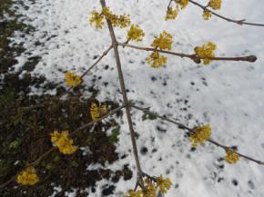 На выходные в Украине снова похолодает
