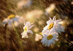 В Україну йдуть холод і дощі