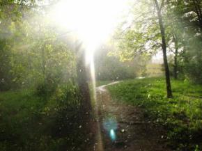 В Україні пройдуть дощі та похолодає