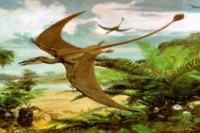 Вчені збираються виростити динозаврів в лабораторії