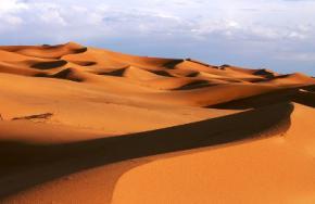 Учёные обнаружили жизнь в самом сухом месте на Земле