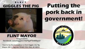 Убийца, пьяница и свинья поборются за пост мэра американского города