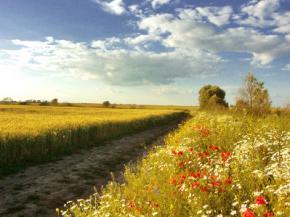 Последние дни лета порадуют украинцев теплом