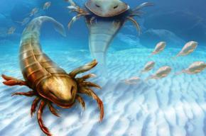 Знайдено рештки найдавнішого гігантського морського скорпіона розміром з людину