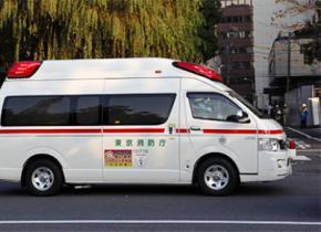 Старейшая жительница Японии умерла в возрасте 115 лет