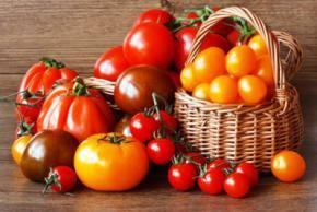 Користь і шкідливість помідорів