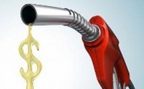 Почему у вашего автомобиля повышенный расход топлива? В чем причина?