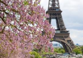 Париж. Весняний вояж, відпочинок в Парижі навесні