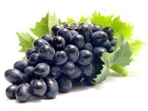 Виноград, польза, положительные свойства винограда