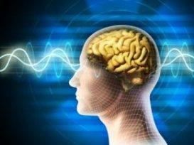 Фізичні вправи сповільнюють процес старіння мозку